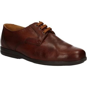 Schoenen Heren Derby Fontana 5685-VI Bruin