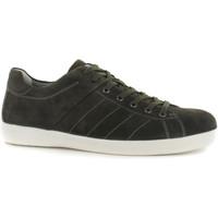 Schoenen Heren Lage sneakers Stonefly 108541 Groen