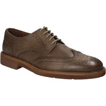 Schoenen Heren Derby Maritan G 111084 Bruin