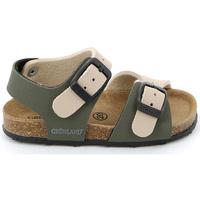 Schoenen Kinderen Sandalen / Open schoenen Grunland SB0413 Beige
