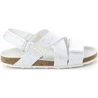 Schoenen Kinderen Sandalen / Open schoenen Grunland SB0813 Zilver