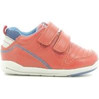 Schoenen Kinderen Lage sneakers Chicco 01056499000000 Rood