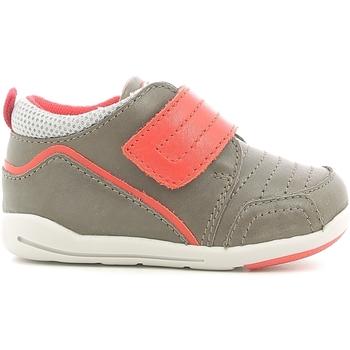 Schoenen Kinderen Lage sneakers Chicco 01056498000000 Marron