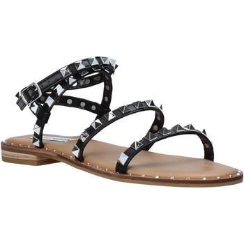 Schoenen Dames Sandalen / Open schoenen Steve Madden SMSTRAVEL-BLK Zwart