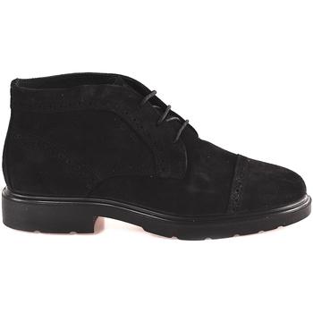 Schoenen Heren Laarzen IgI&CO 2100833 Noir