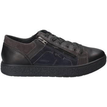 Schoenen Heren Lage sneakers IgI&CO 2131200 Noir