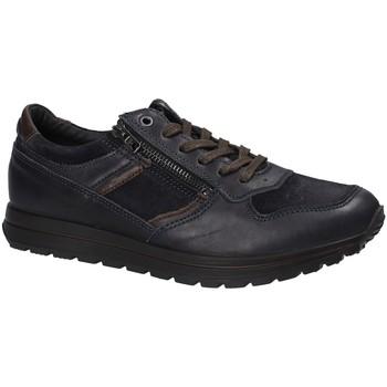 Schoenen Heren Lage sneakers IgI&CO 2136466 Blauw
