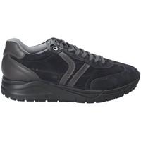 Schoenen Heren Lage sneakers IgI&CO 2137711 Blauw
