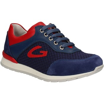Schoenen Kinderen Lage sneakers Alberto Guardiani GK23301 Bleu