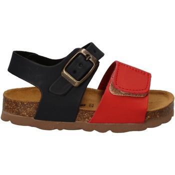 Schoenen Kinderen Sandalen / Open schoenen Bamboo BAM-218 Rood