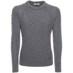Textiel Heren Truien Nero Giardini A774090U Gris