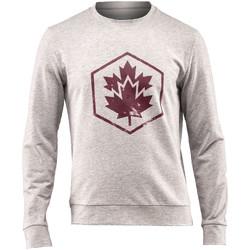 Textiel Heren Sweaters / Sweatshirts Lumberjack CM60142 001 502 Grijs