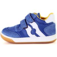 Schoenen Kinderen Lage sneakers Falcotto 2014156 01 Bleu