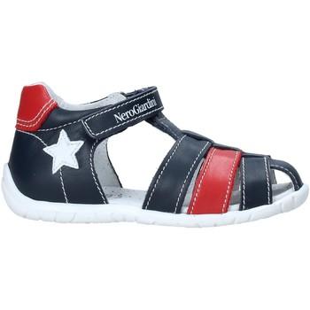 Schoenen Kinderen Sandalen / Open schoenen Nero Giardini E019070M Bleu