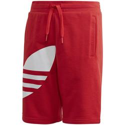 Textiel Kinderen Korte broeken / Bermuda's adidas Originals FM5658 Rood