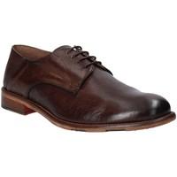 Schoenen Heren Derby Exton 3101 Bruin