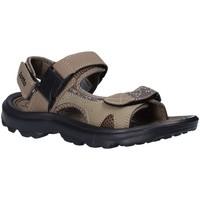 Schoenen Heren Sandalen / Open schoenen Lotto T4769 Bruin