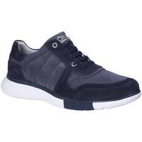 Schoenen Heren Lage sneakers Stonefly 110701 Blauw