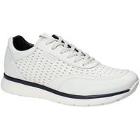 Schoenen Heren Lage sneakers Impronte IM181025 Wit