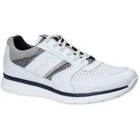 Schoenen Heren Lage sneakers Impronte IM181021 Wit