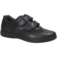 Schoenen Heren Lage sneakers IgI&CO 1101 Zwart