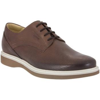 Schoenen Heren Derby IgI&CO 1107 Bruin