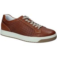 Schoenen Heren Lage sneakers IgI&CO 1125 Bruin