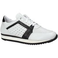 Schoenen Heren Lage sneakers Exton 558 Wit