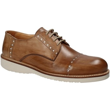 Schoenen Heren Derby Exton 883 Bruin