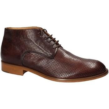 Schoenen Heren Laarzen Exton 5355 Bruin