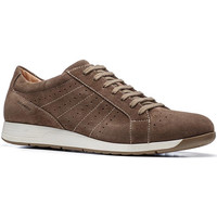 Schoenen Heren Lage sneakers Stonefly 110661 Bruin