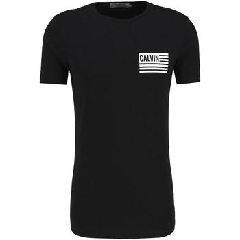 Textiel Heren T-shirts korte mouwen Calvin Klein Jeans J30J306891 Zwart