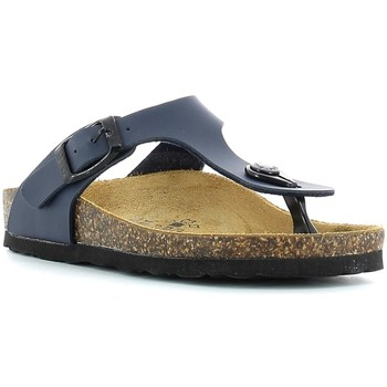 Schoenen Kinderen Slippers Gold Star 1830 Blauw