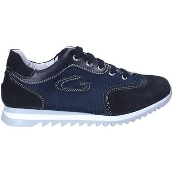 Schoenen Jongens Lage sneakers Guardiani GK25343G Blauw