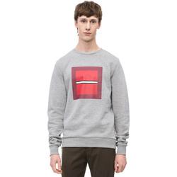 Textiel Heren Sweaters / Sweatshirts Calvin Klein Jeans K10K102722 Grijs