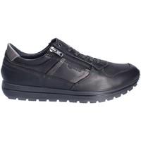 Schoenen Heren Lage sneakers IgI&CO 2136400 Zwart