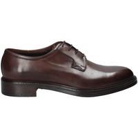 Schoenen Heren Derby Rogers 750_2 Bruin