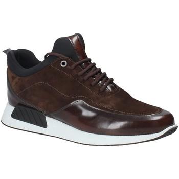 Schoenen Heren Lage sneakers Exton 162 Bruin