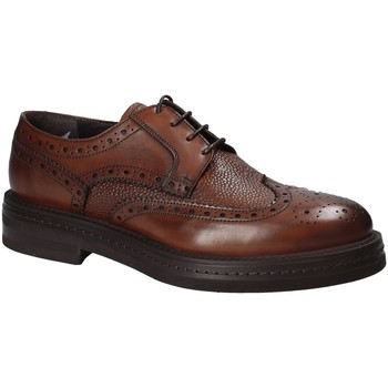Schoenen Heren Derby Rogers 751_2 Bruin