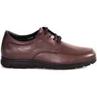 Schoenen Heren Lage sneakers Soldini 20583 P Bruin