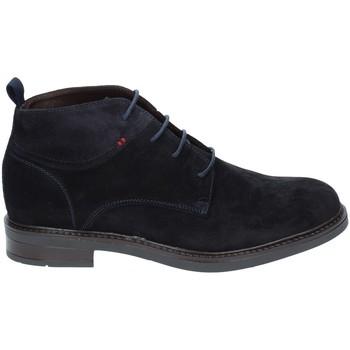 Schoenen Heren Laarzen Rogers 2020 Blauw
