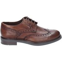 Schoenen Heren Derby Rogers 3040 Bruin