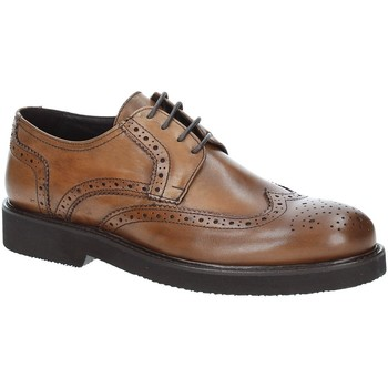 Schoenen Heren Derby Exton 5446 Bruin