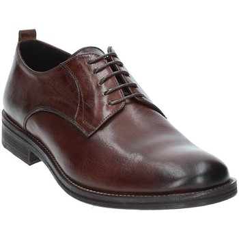 Schoenen Heren Derby Exton 9553 Bruin