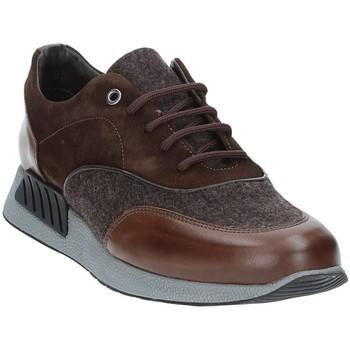 Schoenen Heren Lage sneakers Exton 161 Bruin