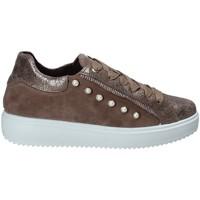 Schoenen Dames Lage sneakers IgI&CO 2153922 Bruin