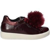Schoenen Dames Lage sneakers IgI&CO 2154844 Rood