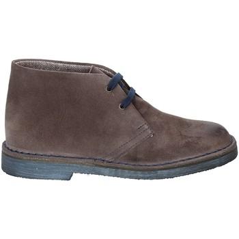 Schoenen Dames Laarzen Rogers 1102D Bruin