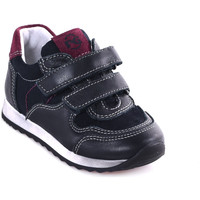 Schoenen Kinderen Lage sneakers Nero Giardini A823220M Bleu