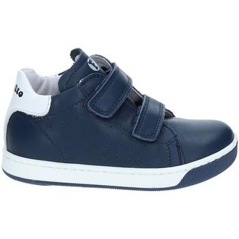 Schoenen Kinderen Lage sneakers Falcotto 2012363-01-9104 Bleu